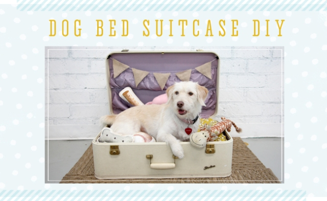 dog-bed-suitcase-DIY